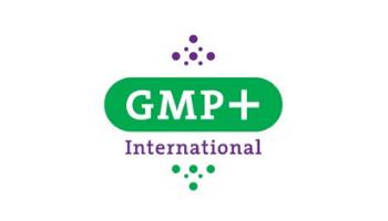 GMP +
