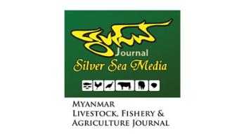 Silver Sea Media